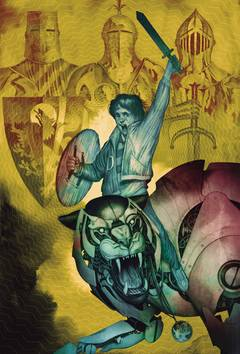 FABLES DELUXE EDITION HC VOL 13